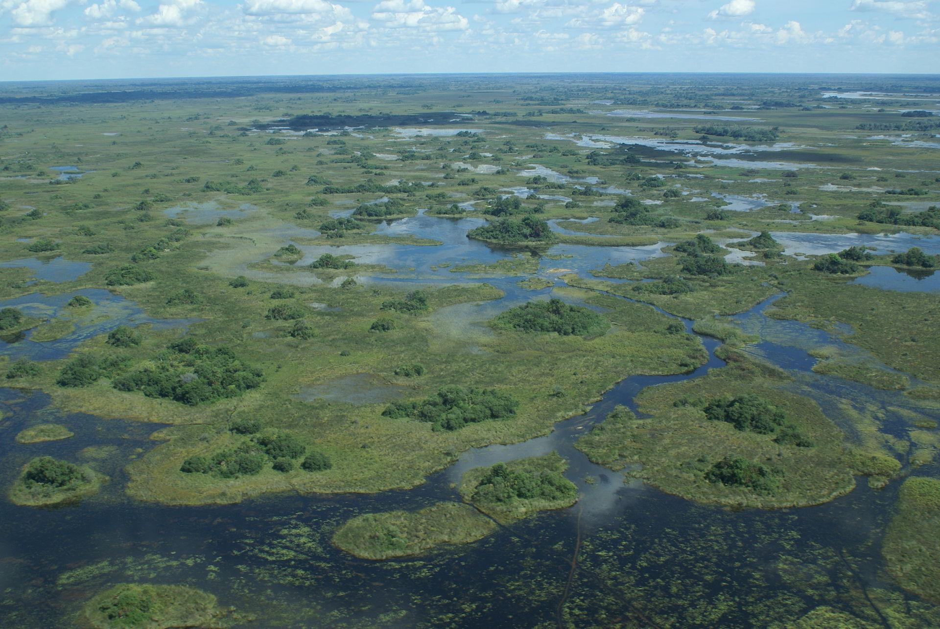 Vue aérienne du Delta de l'Okavango au Bostwana